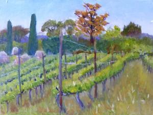 mikes vineyard