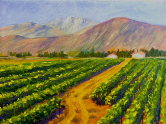 valle seco vines