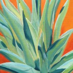 lone agave
